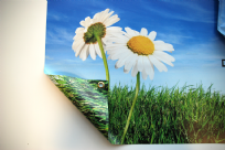 Banner 740gsm PVC Double Sided
